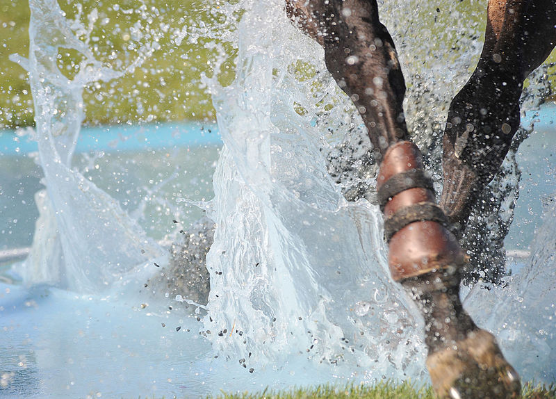 Equestrian sports Athlete Behind Below Close-up Contest CSI Day Equestrian Equine Horses Low Section Motion Movement Obstacle Outdoors Real People Showjumping Showjumping Competition Splashing Sport Sportsman Swimming Track Water