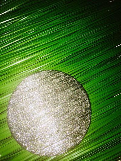 Green Color No