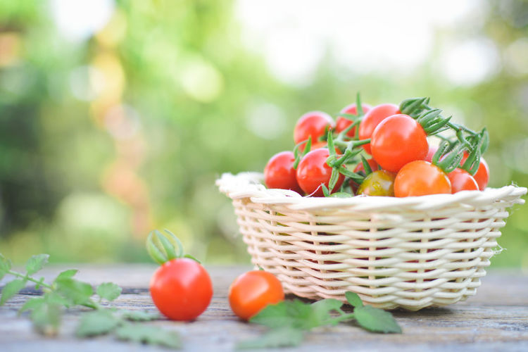 Close-up of cherry tomatoes in wicker basket on table