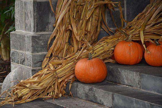 Eyeemphotography Eye4photography  EyeEmBestPics EyeEm Best Shots Eyemphotography Nikonphotography Pumpkin Pumpkin!Pumpkin! Holloween🎃 Close-up Outdoors Beauty In Nature Nikon Photography Halloween Orange Color EyeEm Best Shots - Nature
