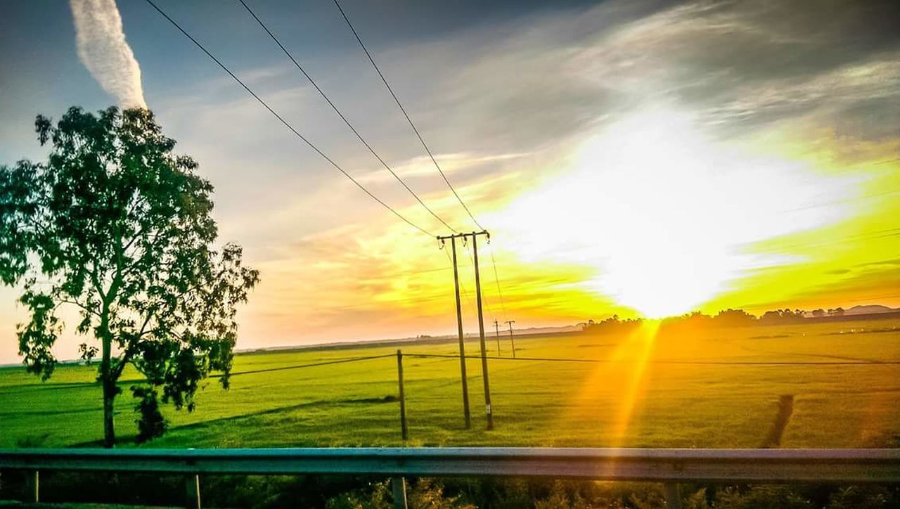 cable, sky, electricity, electricity pylon, power supply, field, power line, tree, no people, cloud - sky, nature, beauty in nature, sunset, landscape, fuel and power generation, tranquility, outdoors, scenics, grass, growth, technology, day, telephone line