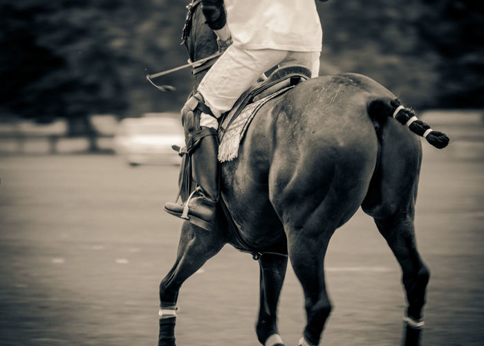 Abstract of a polo match at Kirtlington Park, Oxfordshire Kirtlington Polo Park Polo Polo Equipment Day Game Horse Horse Photography  Horse Tack Polo Match Polo Player Polo Ponies Polo Pony Riding Stirrups Tack