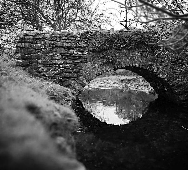 Lake District North West England Cumbria England UK Day Outdoors Environment Blackandwhite Photography Black & White Tree Nature Water Outdoors No People Scenics Tranquil Scene Beauty In Nature Day Tranquility Close-up Sky