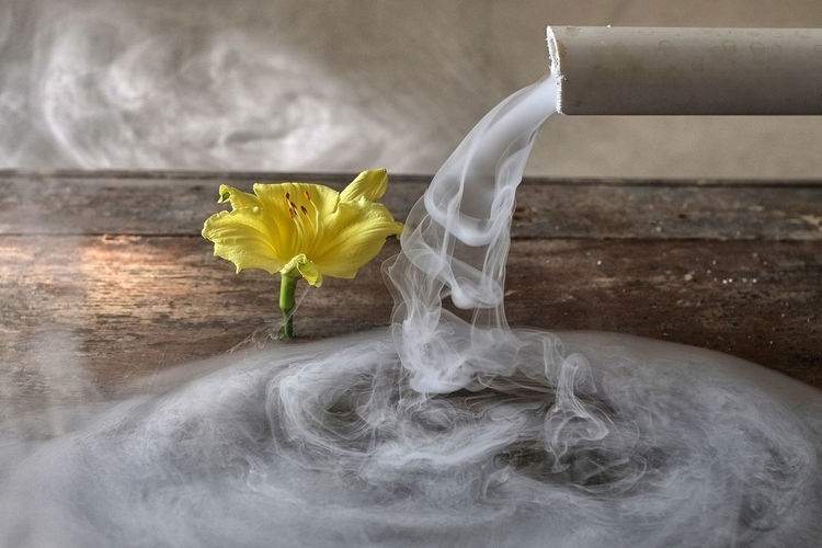Yellow flower by smoke coming out from pipe