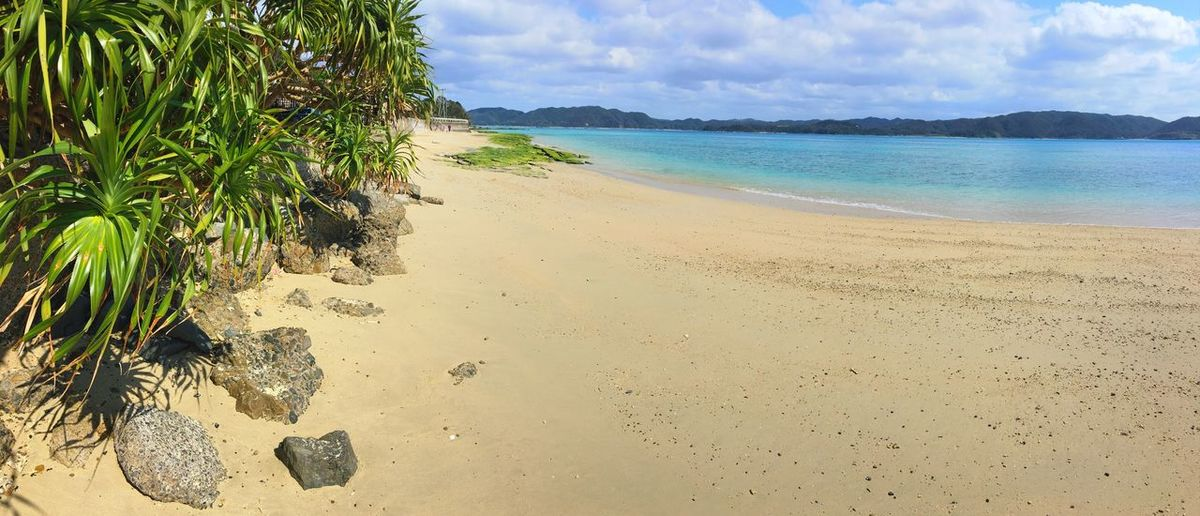 奄美 Ocean Island Amami Island