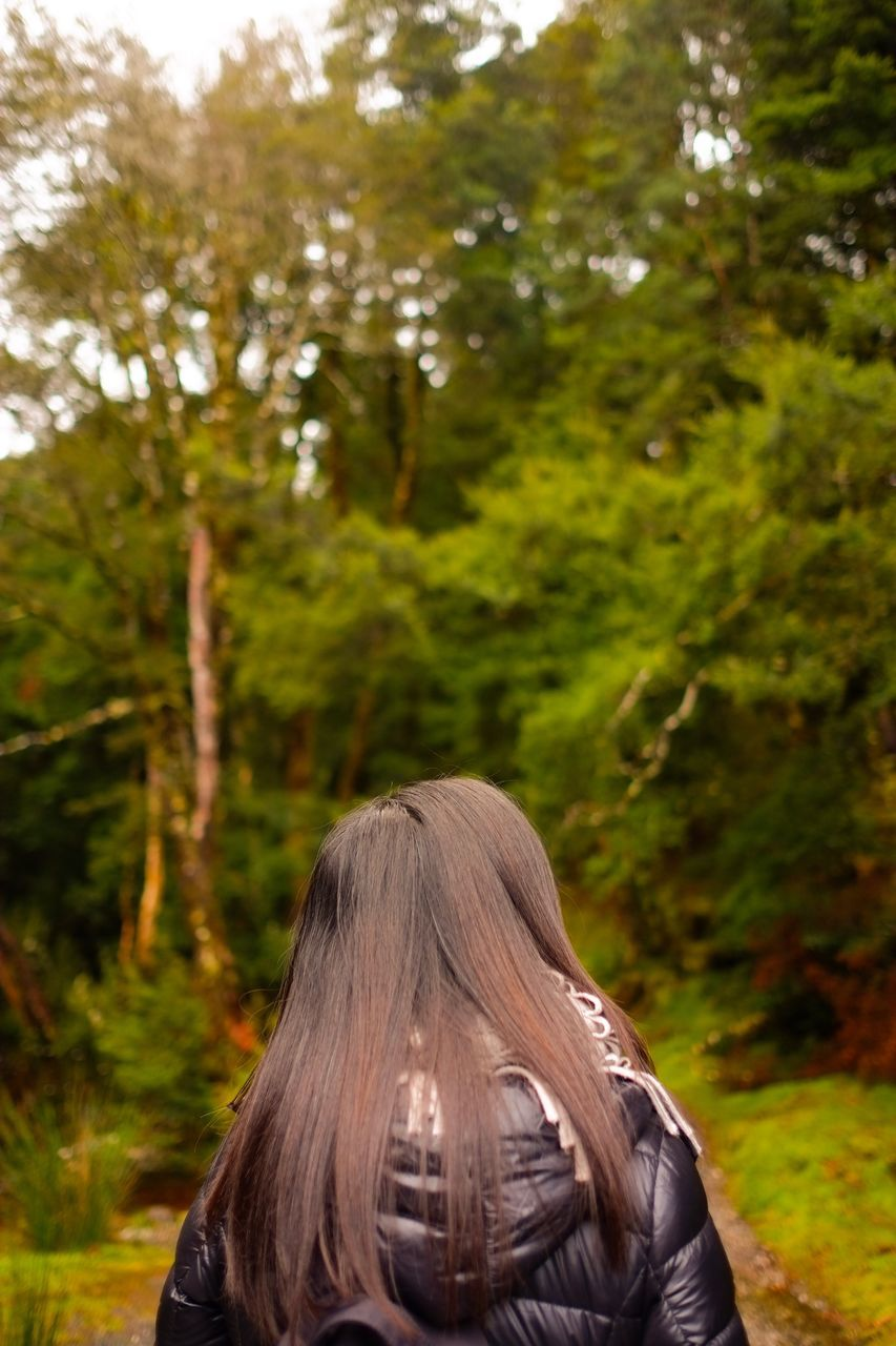 rear view, real people, one person, focus on foreground, tree, nature, lifestyles, leisure activity, outdoors, women, day, headshot, growth, mammal, people