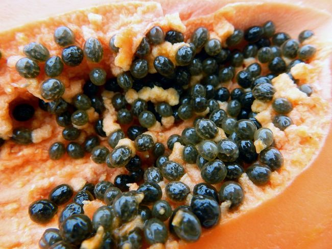 Abundance Close-up Food Freshness No People Papaya Papaye PawPaw Ready-to-eat Seed