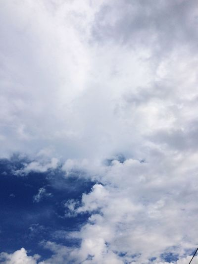 Sky Sky Fresh