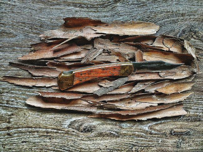Forrest Survival Bark Knife Art Knife Survival Knife Carving Tree Bark