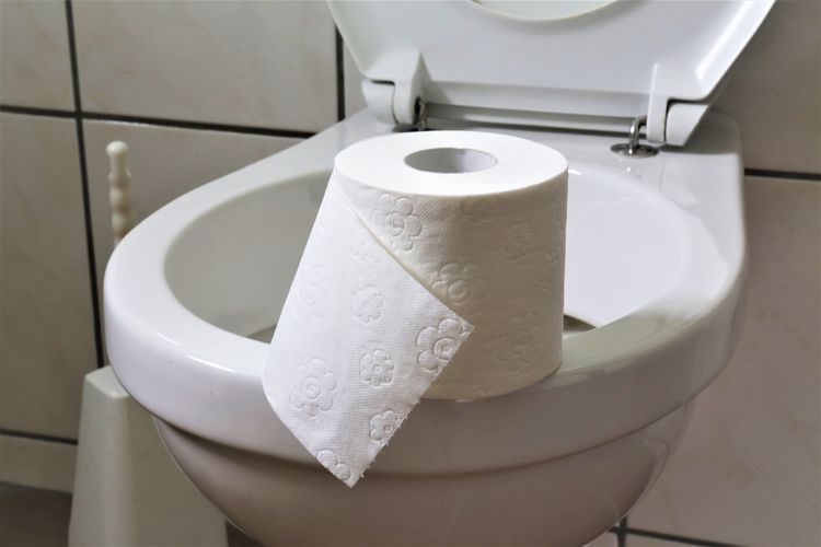 Close-up of toilet paper on bowl