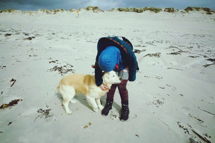Dog Pets Beach Sand Domestic Animals Animal Themes One Animal Mammal Day Outdoors No People Nature The Great Outdoors - 2017 EyeEm Awards Wilderness Connemara Pets Of Eyeem Ireland Leisure Activity Beauty In Nature Walking The Dog Dog Love Dogs Of EyeEm Goldenretriever Golden Retriever Playing With My Dog
