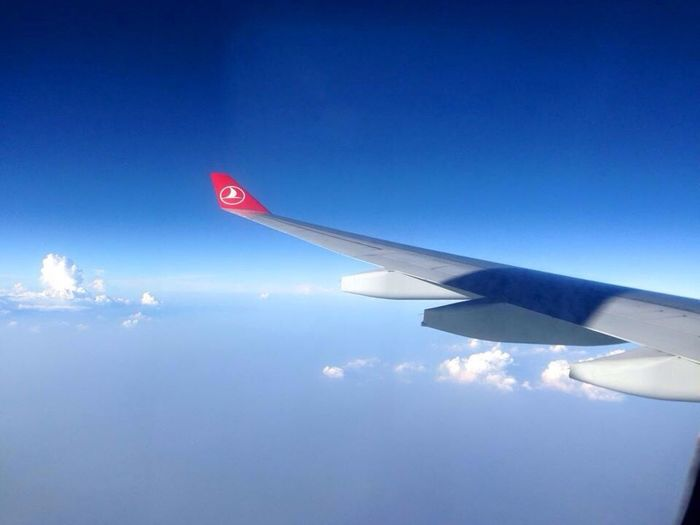 Turkey Airline Fly To  Thailand Travelling Trip Fun