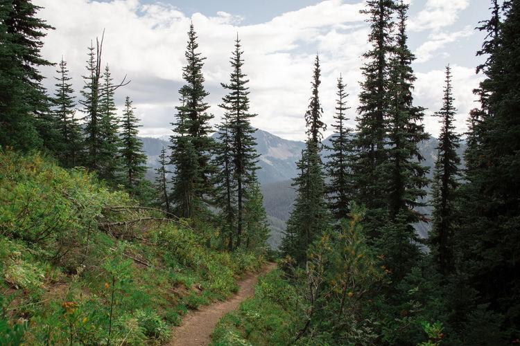 A narrow hiking