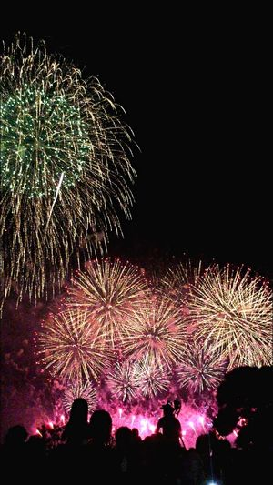 Fireworks Fireworksphotography Fireworks In The Sky Fireworks! Fireworks❤ Fireworks(: Firework 黄門祭り Red Green Green Color