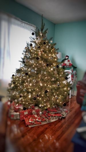 most wonderful time Lexington KY this is family EyeEm Selects Family Real Tree Fir Tree Gifts! Presents Under Tree Tree Christmas Decoration Christmas Holiday - Event Christmas Lights Celebration Christmas Ornament christmas tree Tradition Decoration Christmas Market