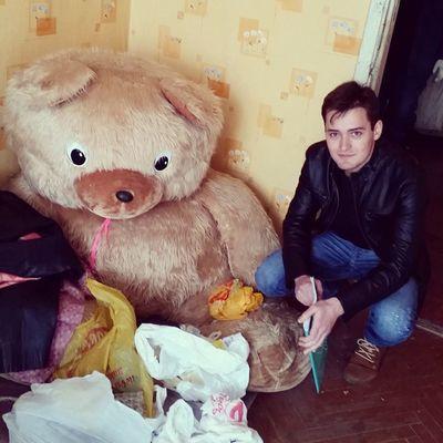 Огромный медведь в расселенной квартире
