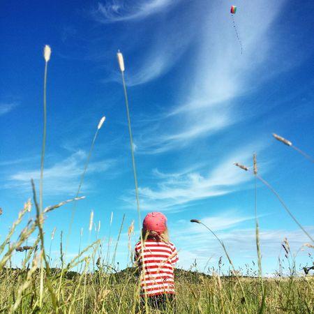 Flying A Kite Summertime Göteborg, Sweden The Essence Of Summer