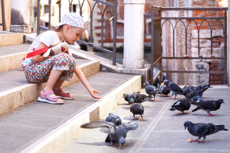 A little girl feeds pigeons. the girl is sitting on the stairs. a child in venice.