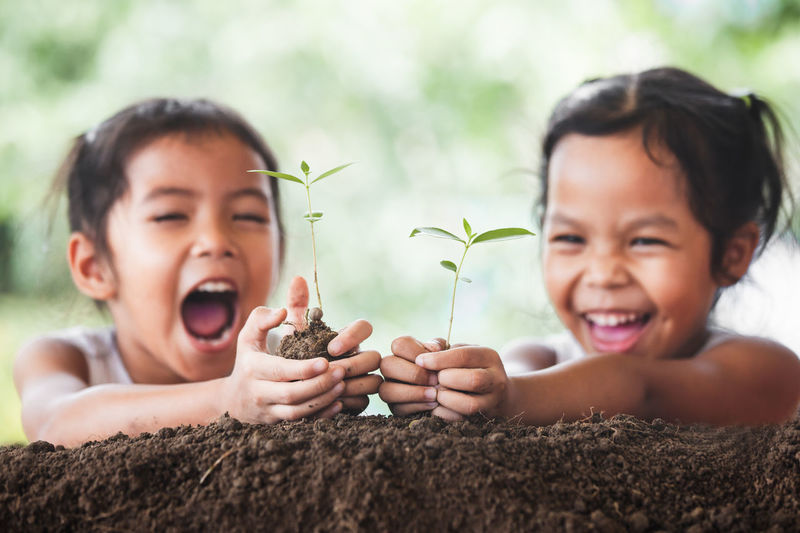Two cute asian child girls planting young tree on black soil together with fun Agriculture Asian  Family Happiness Nature Plant Sprouts Tree Biology Child Conservation Daughter Ecology Environment Fertilizer Friendship Garden Girl Hand Harmony Kid Seedling Sibling Smile Soil