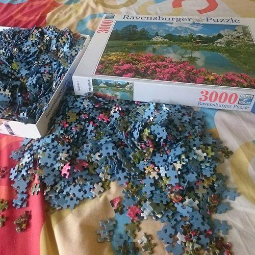 whoaa! 3000 crazy pieces puzzle