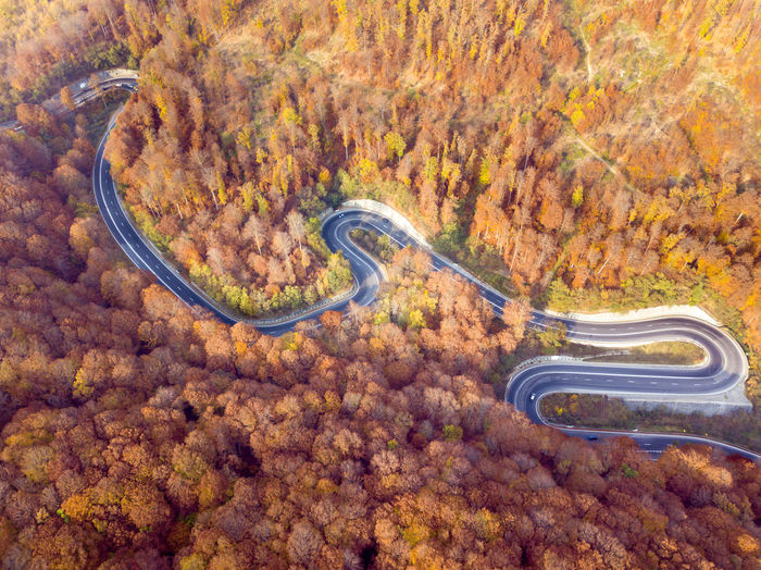 Winding road from high mountain pass, in autumn season. Romania Road Transportation winding road Autumn colors Road Transportation Winding Road Autumn Woods Forest Asfalt Curve Valley Fall Sky Mountain Tree Travel Destination