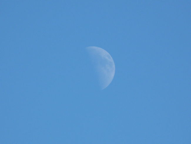 Moon In Afternoon Sky Moon Blue Nature Beauty In Nature Astronomy Low Angle View Scenics Tranquil Scene Tranquility Clear Sky Space Half Moon Outdoors Sky Only Space Exploration No People Crescent Close-up Sardinia Sardegna Italy
