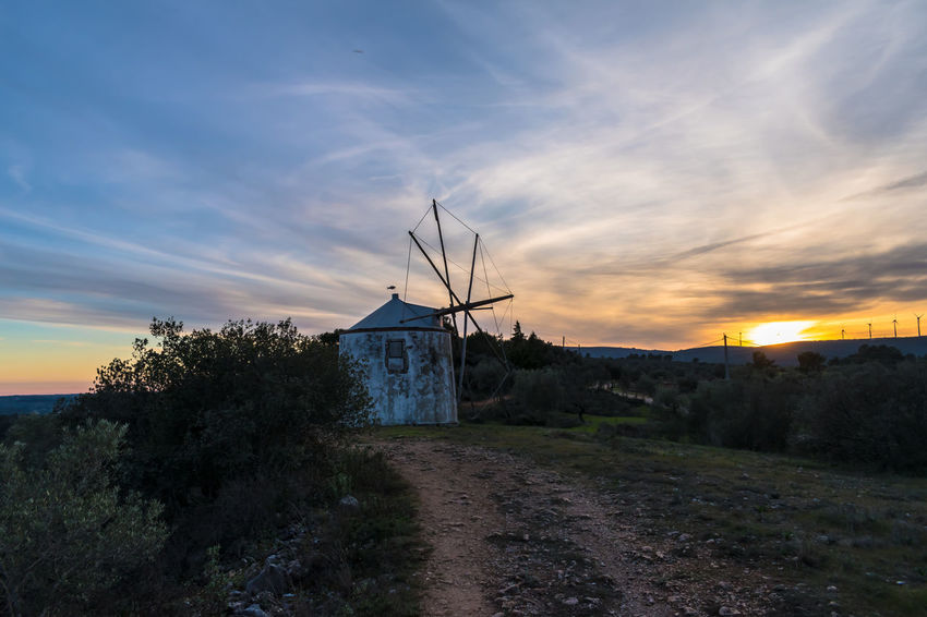 Alternative Energy Architecture Beauty In Nature Building Exterior Built Structure Cloud - Sky Day Industrial Windmill Nature No People Outdoors Sky Sunset Traditional Windmill Tree Wind Power Wind Turbine Windmill