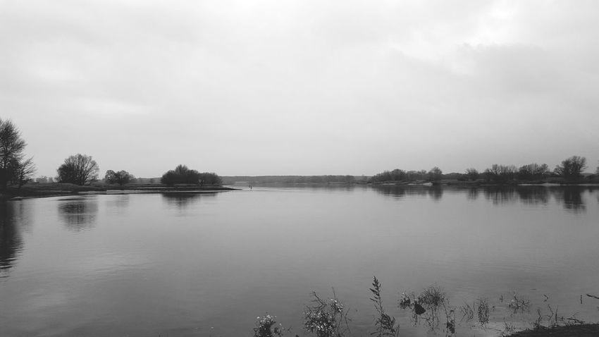 Vscocam Mecklenburgvorpommern Nature_perfection Natureshots Nature Elbe Fluss Riverside