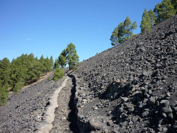 echt schräg drauf Tranquility La Palma, Canarias Volcanic Landscape Walking Path Wanderlust Wandern Stones Grey Blue Sky Vulkanlandschaft Stoney Schräglage Blue Tree Nature Sky No People Day Outdoors