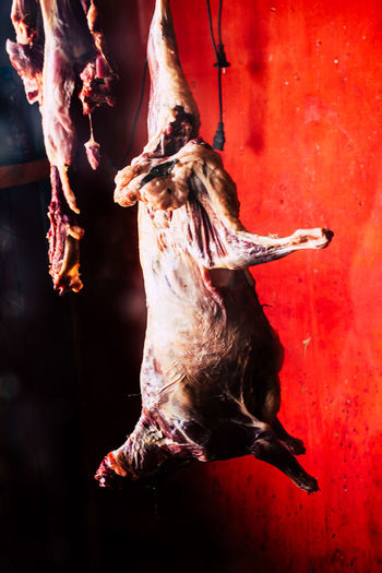 Goat Hanging Meat! Meat! Meat! Meatballs Red African Butchery Animal Themes Blood Butcher Close-up Corpse Day Dead Goat Flesh Food For Sale Goat Meat Halloween Horror Meat Outdoors People Pork Red Spooky Business Stories An Eye For Travel EyeEmNewHere