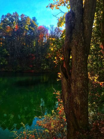 Autumn colors at Fuller Lake