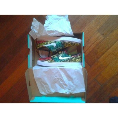«new pair of shoes» Nikesb Zebra Rainbow