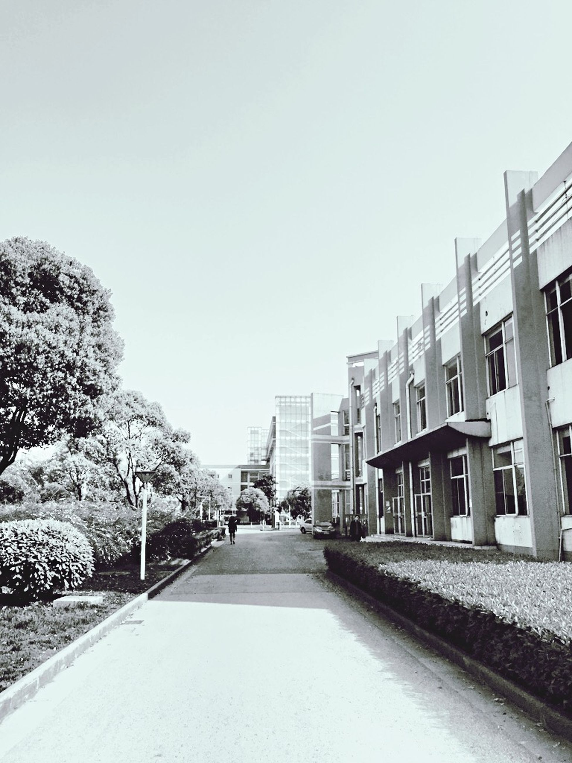 building exterior, architecture, built structure, clear sky, the way forward, street, diminishing perspective, copy space, road, snow, winter, cold temperature, city, residential structure, vanishing point, transportation, tree, residential building, building, day