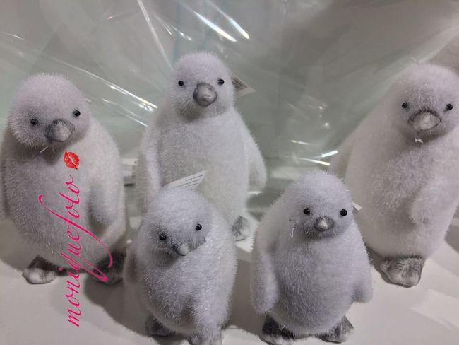 Ich liebe Pinguine. ❄️ Monique52 Weihnachtsdeko Figur Pinguin Diesindcool Dezember 2016 Christmas Time