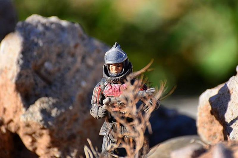 Lurking..Toyonlocation Toys Actionfigure Ogre TheCurse Cheaptoys Military Miniature Toypictures Toyart Plants Actionfigure Figurine  Collectable Arizona Desert Photoshoot Toyaddict Lurking Toycrewbuddies Teamnikon Tv_hdr Clean_captures Toygroupalliance Toygroup_alliance toystagram