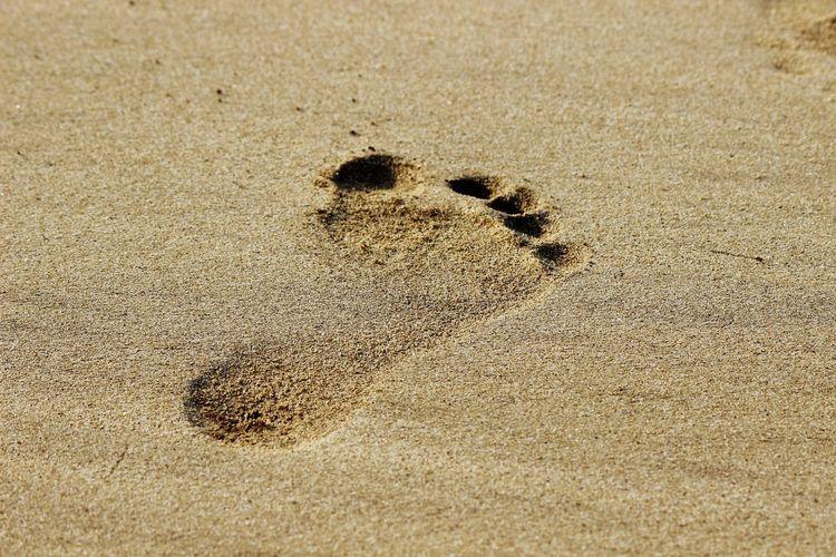 Beach Sand Sand