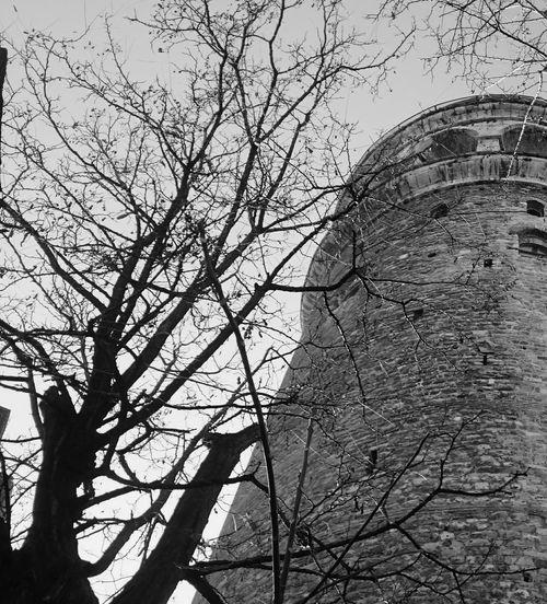 Blackandwhite Siyahbeyaz Winter Istanbullovers Galatatower Travel Photography Taking Photos January January2016 EyeEm Best Shots Me, My Camera And ı