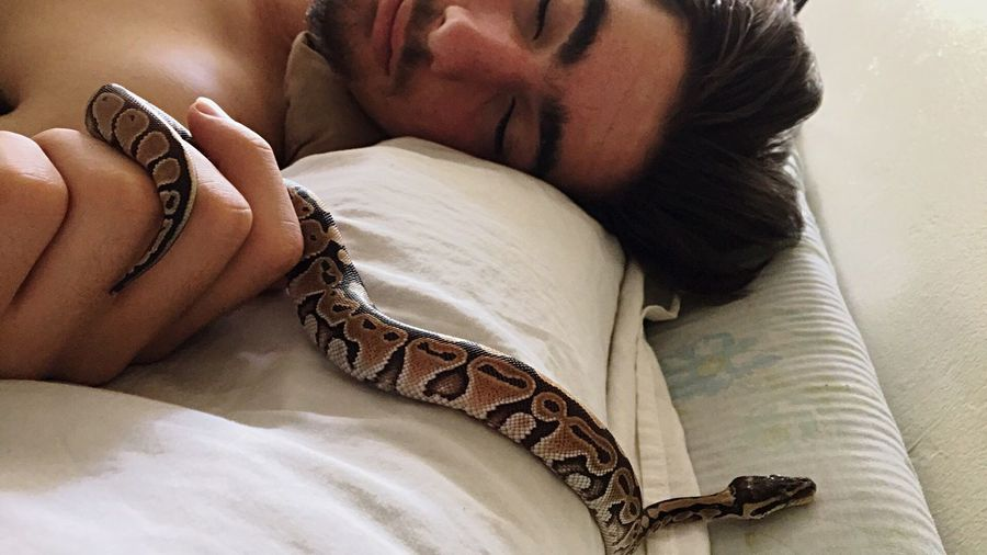 EyeEm Selects My Son W His Brothers Friends Pet Snake Indoors  Human Body Part Relaxation Lying Down First Eyeem Photo Eyeem Market Showcase July Best Eyeem Pics Pithon Snake ♥ Happiness EyeEm Best Shots Live For The Moment