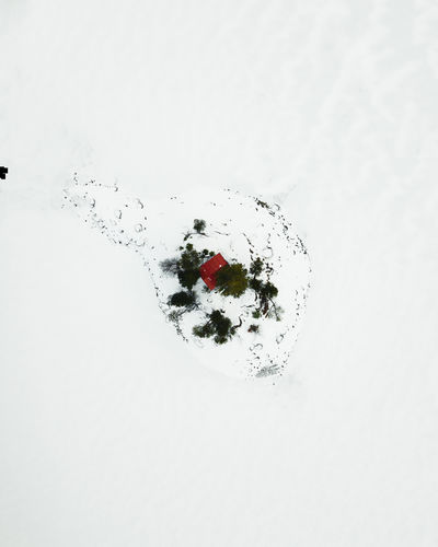 Beautiful Eibsee captured during in winter by drone. Studio Shot White Background No People Copy Space Nature Directly Above Indoors  Berry Fruit Fruit Food Food And Drink Freshness Cold Temperature Close-up Winter Snow Single Object Water Eibsee Bayern Cabin Escape My Best Photo