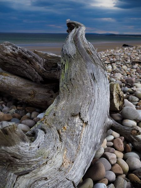 Nairn Nairn Beach Scotland Highlands Beach Sea Outdoors Nature Pebble Day Rock - Object Horizon Over Water Sky Travel Destinations Water Beauty In Nature Pebble Beach Close-up
