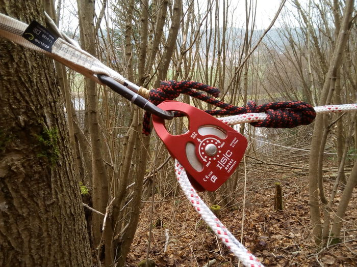 Rope Knot Baumfällung Tree No People Outdoors Seil Baum Baumpflege Im Wald Forest Bqaquaris Bq Seilrolle Klemmknoten Bandschlinge Karabiner