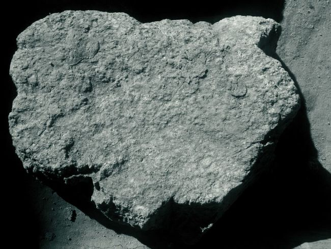 just a rock Light And Shadow Close-up Rocks Black And White Meteor Dormant Still Object No People Fossil Close-up The Still Life Photographer - 2018 EyeEm Awards