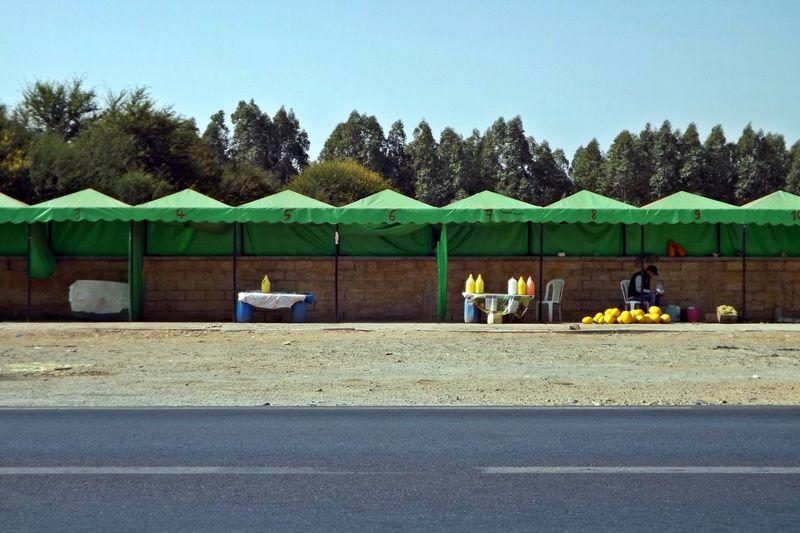 Rural Vendeur Arbre Day Marchandises Melon Men Outdoors People Raisins Real People Route Sky Sol Tentes Tree Voyage