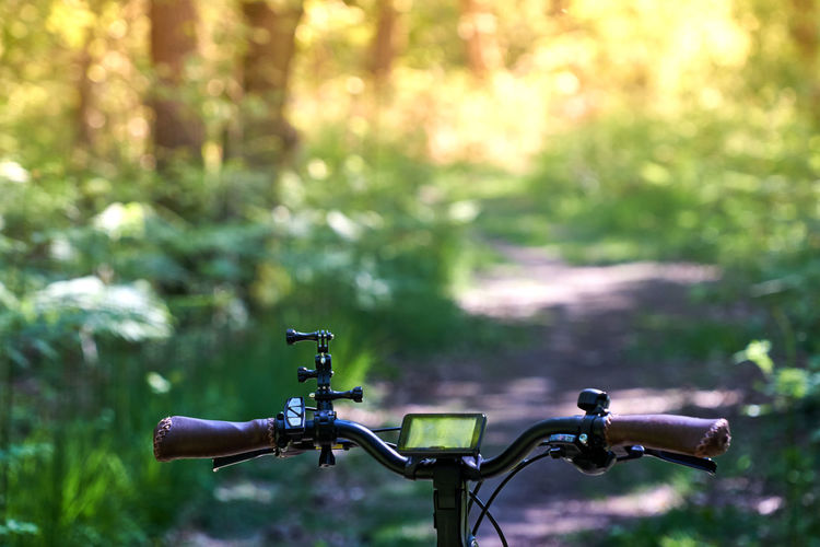 Close-up of bicycle wheel in forest