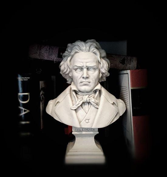 Ludwig Van Beethoven Beethoven Marbledstone Sculpture