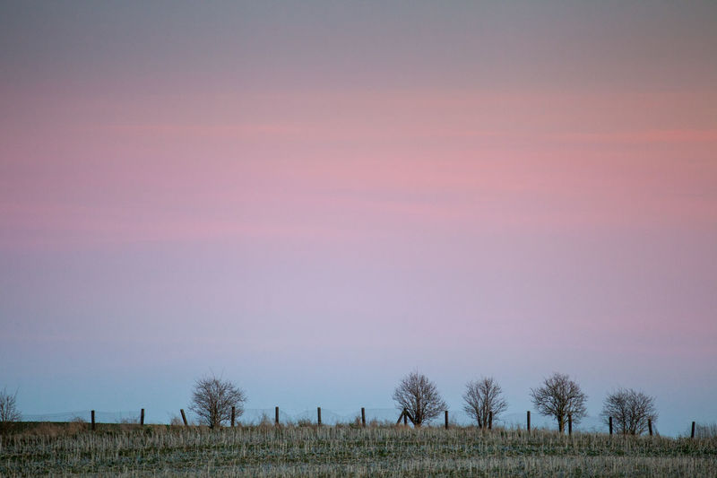Atmosphere Atmospheric Mood Beauty In Nature Cloud Cloud - Sky Cloudy Dramatic Sky Dusk No People Orange Color Outdoors Overcast Remote Scenics Showcase: December Sky Sunset Tranquil Scene Tranquility Uckermark Winter Pastel Power Landscapes With WhiteWall