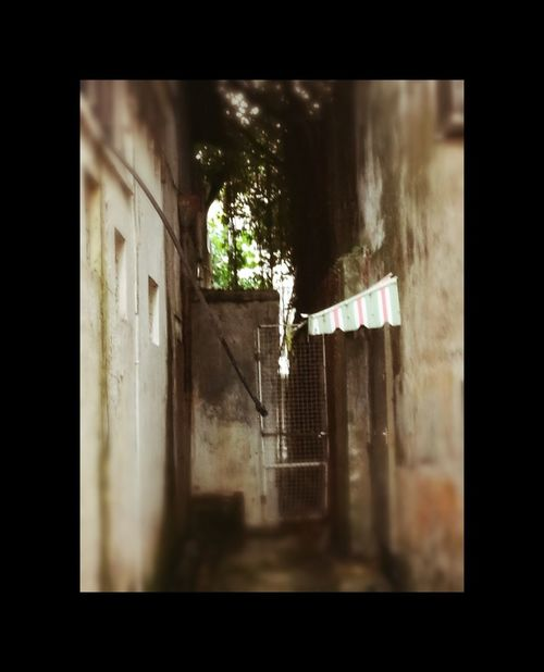 Back Alley Lane Muar Johor HuaweiP9 Back Door Dark Places Window Architecture Built Structure Day Indoors  No People City