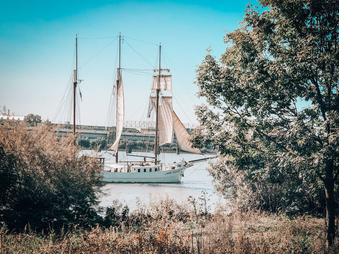 Sailboats on riverbank against sky