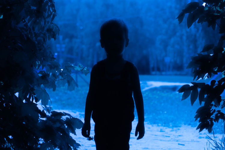 Silhouette of boy standing on land admist plant