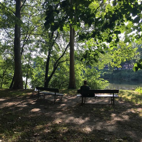 Torino, lungo Po. Torino City Nature Relaxation Real People